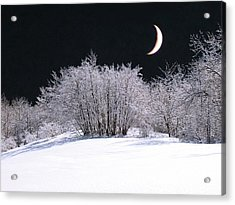 Snow In The Moonlight Acrylic Print by Giorgio Darrigo