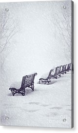 Snow In The Park Acrylic Print