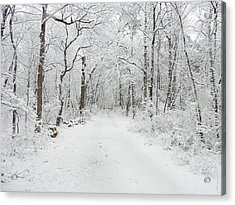 Snow In The Park Acrylic Print