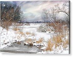 Snow Lake Acrylic Print by Mary Timman