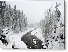 Snow Landscape - Trees And River In Winter Acrylic Print by Matthias Hauser