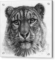 Snow Leopard - Panthera Uncia Portrait Acrylic Print by Svetlana Ledneva-Schukina
