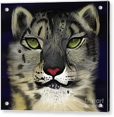 Snow Leopard - The Eyes Have It Acrylic Print