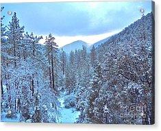 Snow Magic Acrylic Print by Gem S Visionary
