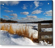 Acrylic Print featuring the photograph Snow Marsh by Dianne Cowen