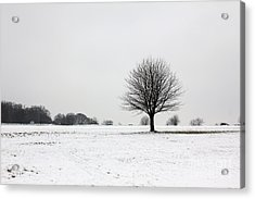 Snow On Epsom Downs Surrey England Uk Acrylic Print