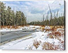 Snow On Roberts Branch Acrylic Print