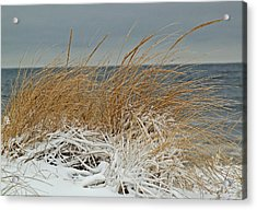 Snow On The Dunes Acrylic Print