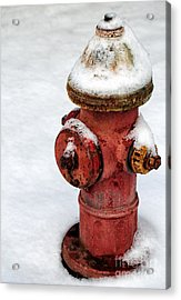 Snow On The Hydrant Acrylic Print by John Rizzuto