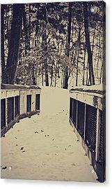 Snow Path Acrylic Print by Dawdy Imagery