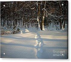 Snow Path Acrylic Print by Randi Shenkman