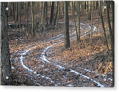Snow Path Winding Through The Woods Acrylic Print by Annette Gendler