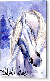 Snow Pony 1 Acrylic Print