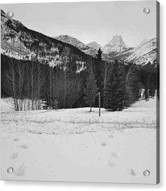 Snow Prints Acrylic Print by Cheryl Miller