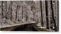 Snow Road Acrylic Print by Tom  Reed