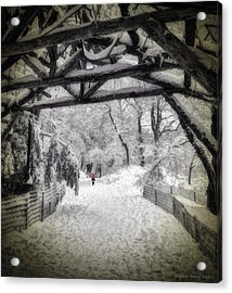 Snow Scene In Central Park Acrylic Print