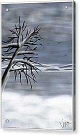 Snow Scene Acrylic Print by Judy Via-Wolff
