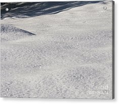 Snow Shadows 2 Acrylic Print by Rachel Lowry