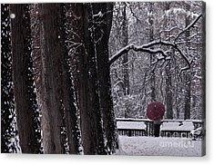 Acrylic Print featuring the photograph Snow by Simona Ghidini