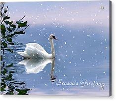 Snow Swan  Acrylic Print by Jessica Jenney