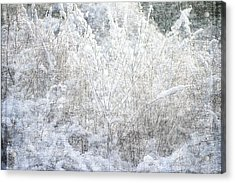 Snow Textures Acrylic Print by Suzanne Powers