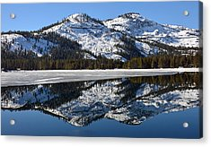 Snow Top Acrylic Print by Michael Brown