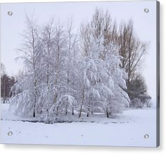 Acrylic Print featuring the photograph Snow Trees by Paul Gulliver