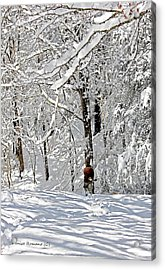 Snow Walking Acrylic Print by Denise Romano