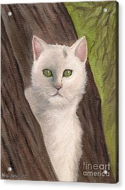 Snow White The Cat Acrylic Print by Kostas Koutsoukanidis