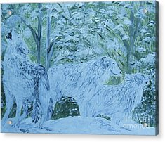 Snow Wolves Acrylic Print by Eloise Schneider