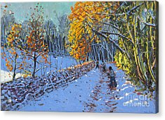 Snowballing Acrylic Print by Andrew Macara