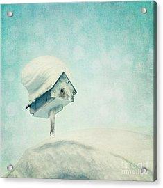 Snowbird's Home Acrylic Print