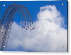 Snowbirds Inverted Acrylic Print
