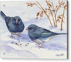 Snowbirds Acrylic Print