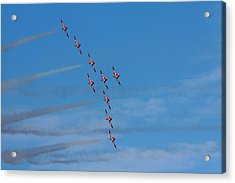 Snowbirds Acrylic Print by Matt Dobson