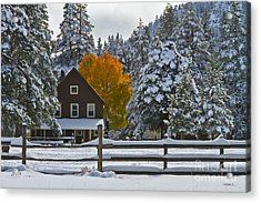 Snowed In At The Ranch Acrylic Print