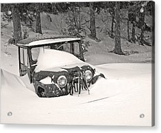 Snowed In Acrylic Print by Barbara West