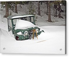 Snowed In - Color Acrylic Print by Barbara West