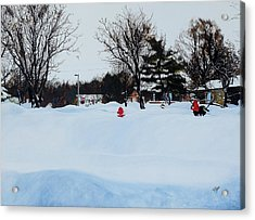 Snowed In Acrylic Print