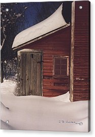 Snowed Out Acrylic Print