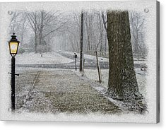 Snowfall Acrylic Print by Brian Wallace