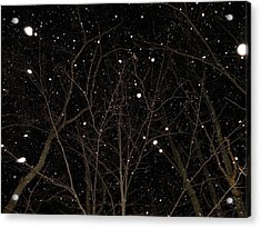 Acrylic Print featuring the photograph Snowfall by Carlee Ojeda