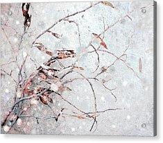 Snowfall On Branch Acrylic Print by Ann Powell