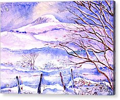 Snowfall On Eagle Hill Hacketstown Ireland  Acrylic Print by Trudi Doyle