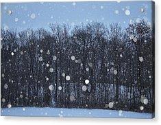 Snowfall Treeline Acrylic Print by Nikki McInnes