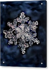 Snowflake Blue Acrylic Print
