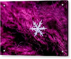 Snowflake On Magenta Acrylic Print