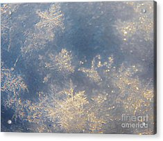 Snowflake Super Macro  4 Acrylic Print by Judy Via-Wolff