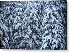 Acrylic Print featuring the photograph Snowflakes by Dennis Bucklin