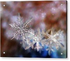 Snowflakes Acrylic Print